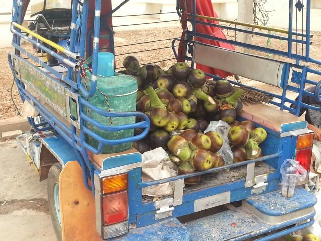 タイの果物 ルークタン オウギヤシの実